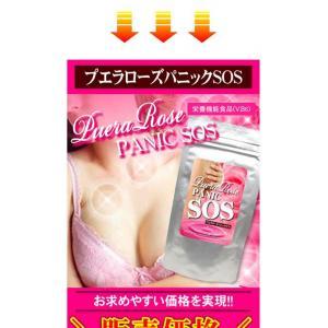 PUERA ROSE PANIC SOS Breast enhancement Japanese