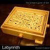 ลูกกลิ้ง เขาวงกต (Labyrinth maze)