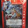 VG-G-TD09 :Shinsei no Jyuuni Shikokujyuu Pack