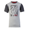 เสื้อลิเวอร์พูล เมนบล็อกทีเชิ้ต ของแท้ 100% Liverpool FC Mens Block Tee