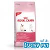 Royal Canin Kitten ขนาด 10 กิโลกรัม