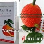 ฟักข้าวแคปซูล (Magna Gac) 30 แคปซุล