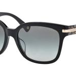 COACH SUNGLASS รุ่น ALFIE BLACK BEIGE OCELOT SIG C : HC8103F 522611