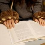 ถุงมือหมี