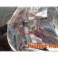 ไฟหน้า LED ขั้ว H7 Cree 3 ดวง 30W 3000lm ตัวใหม่ 2014 thumbnail 4