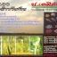 ไรซ์400 สมุนไพรหมักกำจัดข้าวดีดข้าวเด้ง thumbnail 1