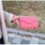 [ พร้อมส่ง ] - กระเป๋าสตางค์แฟชั่น สไตล์เกาหลี สีชมพูเข้ม ใบเล็ก แต่งมงกุฎ งานสวยน่ารัก น่าใช้มากๆค่ะ thumbnail 21