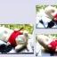 ตุ๊กตาสุนัขดับกลิ่นในรถยนต์ thumbnail 5