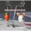 Bunny&Carrot thumbnail 2