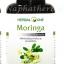 มะรุมแคปซูล เฮอร์บัลวัน Herbal One Moringa