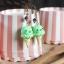 ต่างหู Sumikko Gurashi Ice-cream (Penguin) thumbnail 2