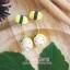 Pupa gang : Tamago sushi thumbnail 1