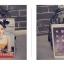 [ Pre-Order ] - กระเป๋าเป้แฟชั่น นำเข้าสไตล์เกาหลี สีโทนดำเทา พิมพ์ลายหนังแบบสาน ทรงเก๋ ๆ ใบกลางสะพายหลัง มีช่องใส่เยอะ หนังคุณภาพสวย น่ารักมากๆค่ะ thumbnail 19