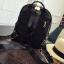 [ พร้อมส่ง HI-End ] - กระเป๋าเป้แฟชั่น สไตล์เกาหลี สีดำคลาสสิค ปักหมุดข้างสุดเก๋ ดีไซน์สวยเท่ๆ งานผ้าร่มไนลอนอย่างดี น้ำหนักเบา น่าใช้มากๆค่ะ thumbnail 21