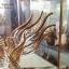 """ของที่ระลึกไทย แก้วเป่าทองตู้กระจกลวดลายมังกร ขนาด 3"""" 4"""" 6"""" 8"""" 11"""" 12"""" 16"""" 18"""" 24"""" thumbnail 5"""