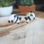 ต่างหูน้องหมีแพนด้าเกาะหู Little Panda thumbnail 2