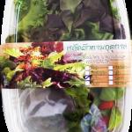 สลัดบ็อกซ์ สลัดผักพร้อมน้ำสลัด (Salad Box)