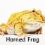 Horned Frog กบฮอร์นฟรอก thumbnail 1