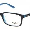 RayBan RX5335D 5529