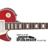 VINTAGE #ReIssued V100CS Flamed Maple Cherry Sunburst Chrome Hardware
