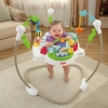 Fisher-Price Zoo Party Jumperoo
