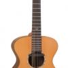 Gordon Giltrap Signature Deluxe Acoustic Guitar VE2000DLX