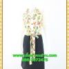 2668ชุดทํางาน เสื้อผ้าคนอ้วนชุดลายดอกสไตล์เชิ๊ตแขนยาวครึ่งศอกปลายแขนตุ๊กตากระดุมหน้ากระโปรงดำพรางสะโพก