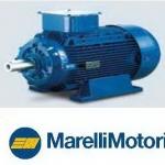 **มอเตอร์เมอร์รารี่ Marelli 1.5 HP รุ่น MAA 90S4