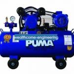 ปั๊มลมพูม่า PUMA รุ่น PP-2P (1/2 แรงม้า)