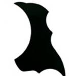 ปิ๊กการ์ดกีต้าร์ รุ่น HB040 สีดำ