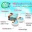 ยาสีฟันสมุนไพร ฟันสวย บายโภคา HERBAL WHITENING TOOTHPASTE by Phoca thumbnail 9