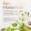 Chular Chular DETOX by KALOW ชูล่า ชูล่า ดีท็อกซ์ ใยอาหารจากธรรมชาติ 100% ลำไส้สะอาด ปราศจากสารพิษ สุขภาพดีจากภายใน สู่ภายนอก thumbnail 13