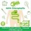 KAYA Chlorophyllin Green Tea Detox คายะ คลอโรฟิลล์ กรีนที ดีท็อกซ์ ขับถ่ายชิลล์ สบายท้อง thumbnail 7