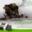 RINZE Detox รินเซ่ ดีทอกซ์สูตรพรีไบโอติก พุงยุบ ลำไส้สะอาด ธรรมชาติ 100% thumbnail 5