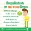 KAYA Chlorophyllin Green Tea Detox คายะ คลอโรฟิลล์ กรีนที ดีท็อกซ์ ขับถ่ายชิลล์ สบายท้อง thumbnail 10