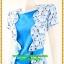 2981ชุดทํางาน เสื้อผ้าคนอ้วนสีฟ้าคอกลมคลุมด้วยตัวสั้นชั้นนอกลายดอกหวานสไตล์เนี๊ยบเรียบง่าย thumbnail 3