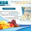 Alena Gluta Plus เอเลนน่า อาหารเสริมช่วยเพิ่มความออร่า thumbnail 2