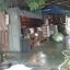 ขายบ้านพร้อมที่ดิน อำเภอท่ามะกา ต.หวายเหนียว กาญจนบุรี เนื้อที่ 154 ตร.ว. thumbnail 4
