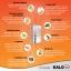 KALOW แกลโล กิ้บซี่ ดักจับ ไขมัน ตั้งแต่เม็ดแรก ง่ายๆ ได้ผลจริง ลดพุง ลดเอว ลดอ้วน thumbnail 4