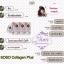 SOSO COLLAGEN PLUS 1000+mg โซโซ คอลลาเจน พลัส อยากมีผิวขาว สวย ใส เด็ก เด้ง ไม่ใช่เรื่องยาก thumbnail 13