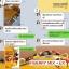 FIBERRY MIX EX ไฟเบอร์รี่ มิกซ์ อีเอ็กซ์ อุดมด้วยเส้นใยอาหาร รสอร่อย ดื่มง่าย ลดพุง thumbnail 25