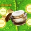 DnB Snail Premium ครีมบำรุงผิว ผสมสารสกัดจากเมือกหอยทาก thumbnail 4