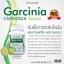 The Nature Garcinia Extract เดอะ เนเจอร์ สารสกัดจากผลส้มแขก thumbnail 3