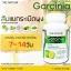 The Nature Garcinia Extract เดอะ เนเจอร์ สารสกัดจากผลส้มแขก thumbnail 15