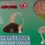 เครื่องช่วยฟัง คล้องหลังหู (Rechargeable) 801F thumbnail 9