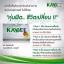 KAYBEE Perfect อาหารเสริมลดน้ำหนัก เคบี สารสกัดจากมะม่วงแอฟริกัน thumbnail 5