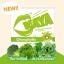KAYA Chlorophyllin Green Tea Detox คายะ คลอโรฟิลล์ กรีนที ดีท็อกซ์ ขับถ่ายชิลล์ สบายท้อง thumbnail 3