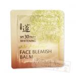 Tester Welcos No Make up face BB cream มีส่วนผสมของสารสกัดจากเมือกหอยทาก และไข่ปลาคาเวียร์