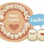 ฟันน้ำนมของลูกน้อยจะขึ้นเมื่อไหร่กันนะ