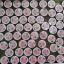 Aura Pink Two ครีมทาปากแดง ปากชมพู นมชมพู Lip & Nipple Cream thumbnail 18